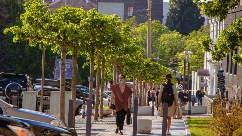 В Днепре высадили 1900 деревьев, - ФОТО, фото-1