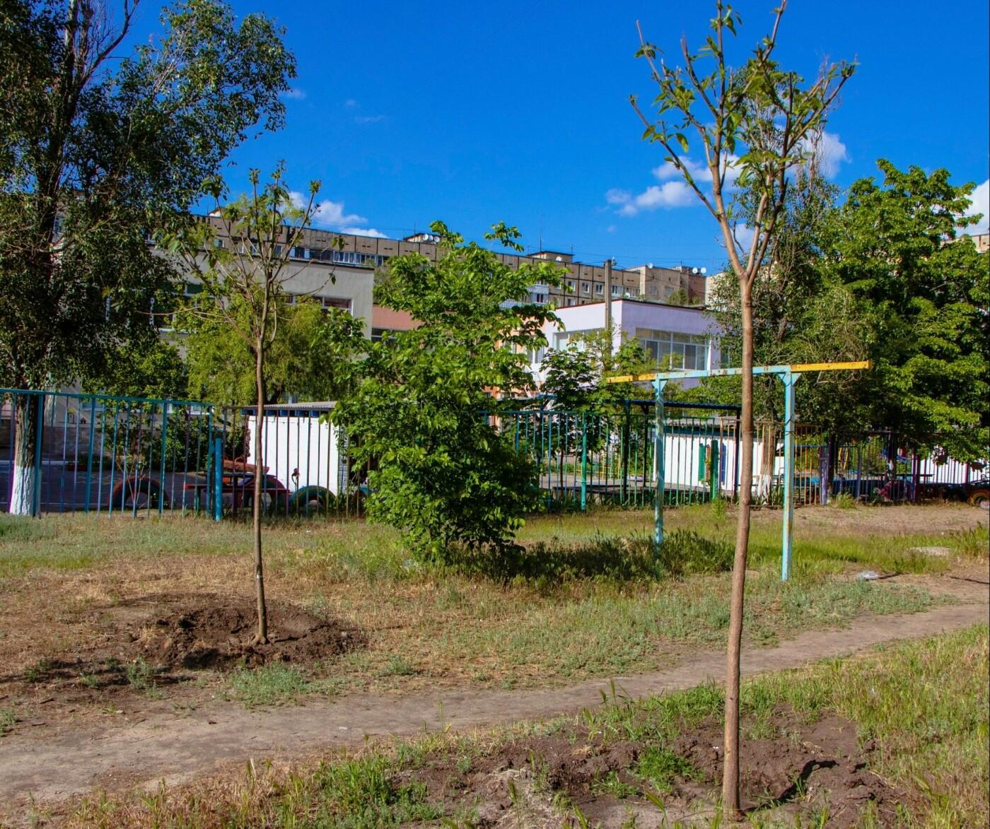 В Днепре высадили 1900 деревьев, - ФОТО, фото-6