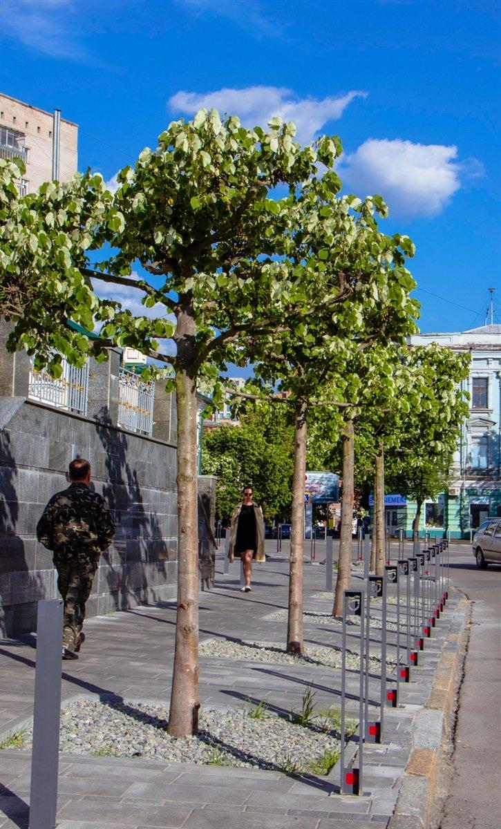 В Днепре высадили 1900 деревьев, - ФОТО, фото-7