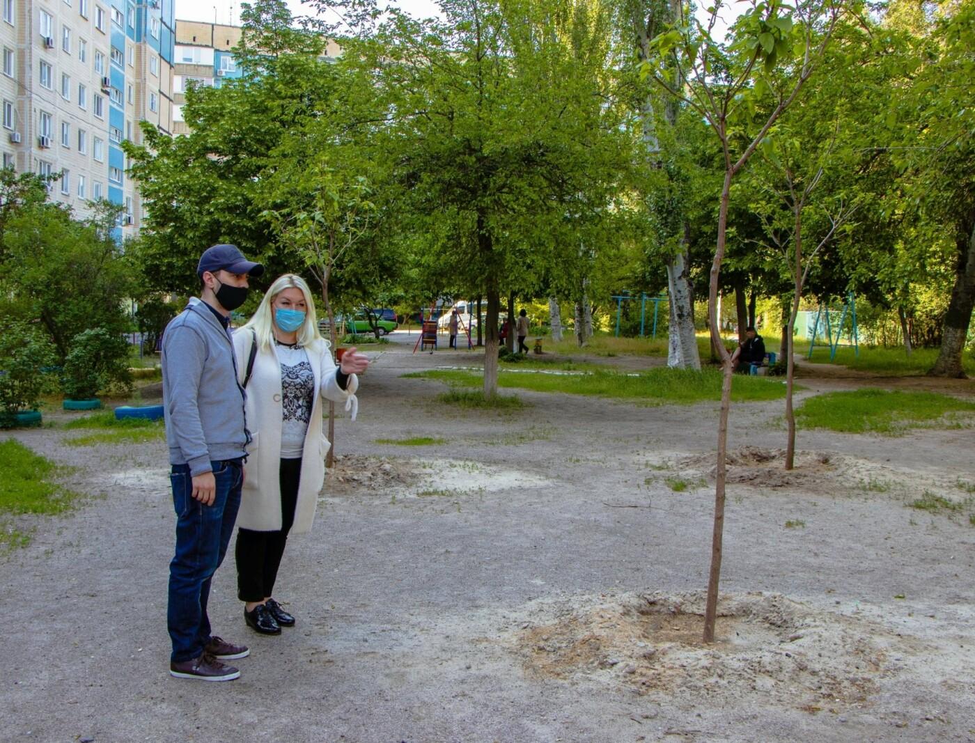 В Днепре высадили 1900 деревьев, - ФОТО, фото-8