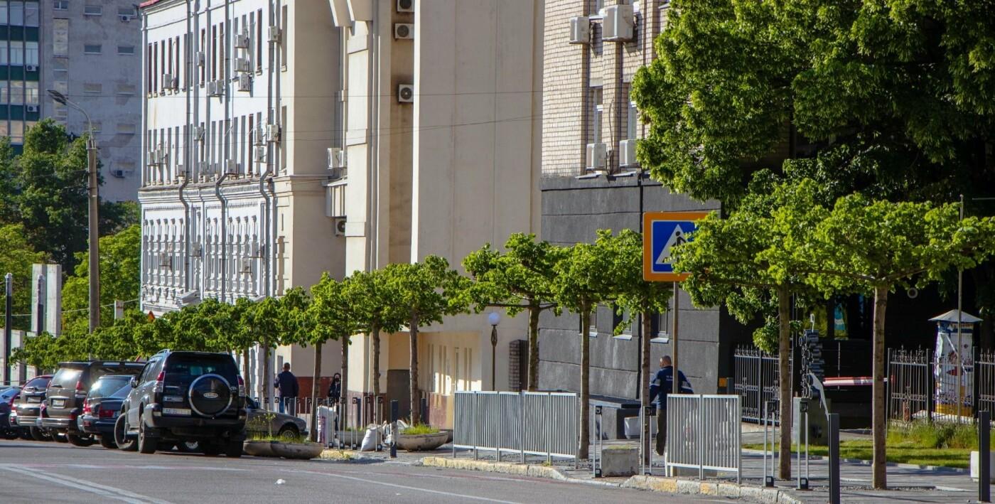 В Днепре высадили 1900 деревьев, - ФОТО, фото-11