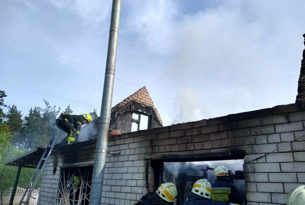 В Днепропетровской области произошел пожар в дачном кооперативе, - ФОТО, ВИДЕО, фото-4