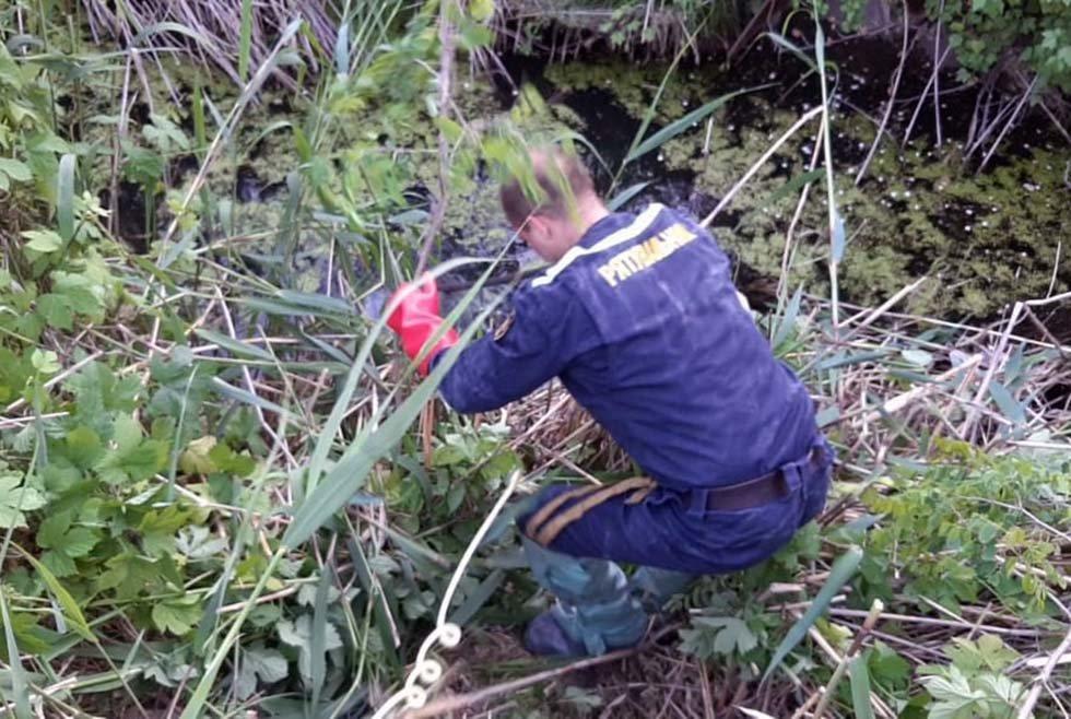 В Днепре в сточной канаве обнаружили тело мужчины, - ФОТО, фото-1