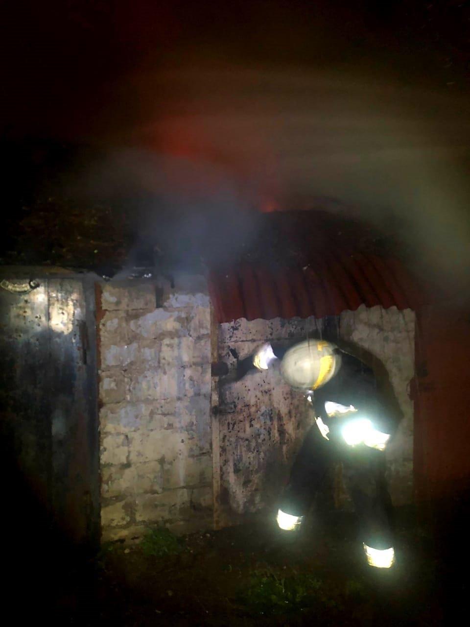 В Днепре возник пожар в четырех сараях, - ФОТО, фото-2