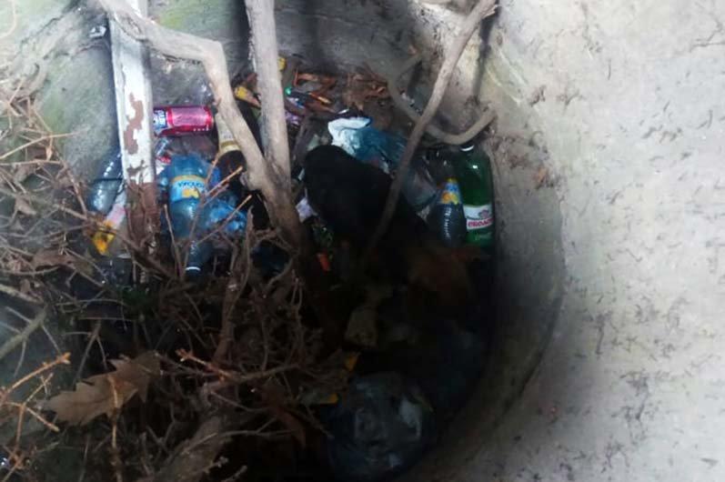 Под Днепром сотрудники ГСЧС доставали собаку из канализационного колодца, - ФОТО, фото-1