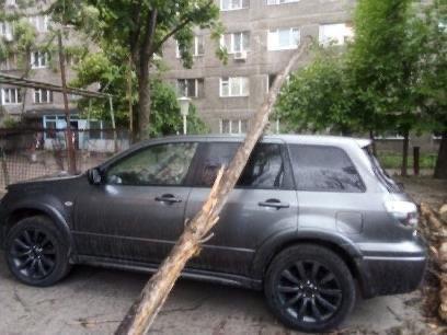 Деревья в лобовом стекле и сломанные заборы: последствия непогоды в Днепре, фото-7