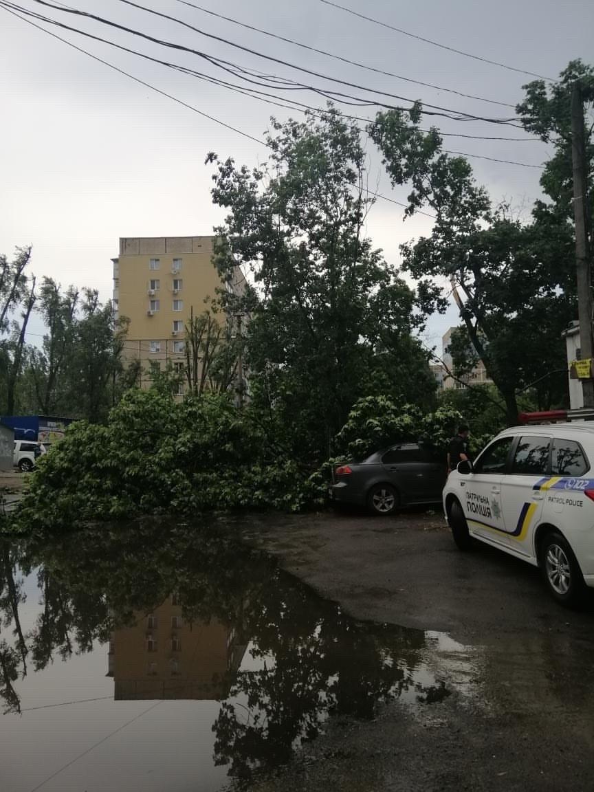 Деревья в лобовом стекле и сломанные заборы: последствия непогоды в Днепре, фото-6