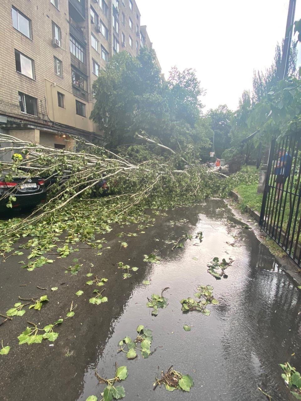 Деревья в лобовом стекле и сломанные заборы: последствия непогоды в Днепре, фото-8