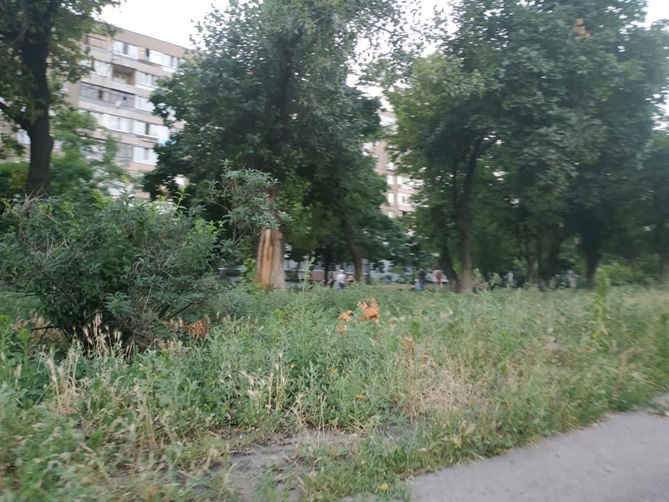 Фото за 1.07.2020, Любовь Ефремова