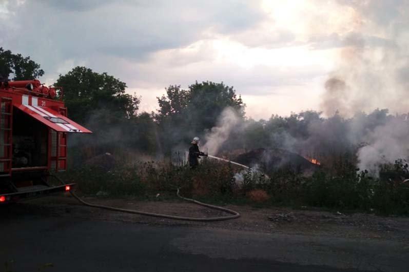 Берегите экосистему: жители Днепропетровщины продолжают палить сухую траву, фото-2