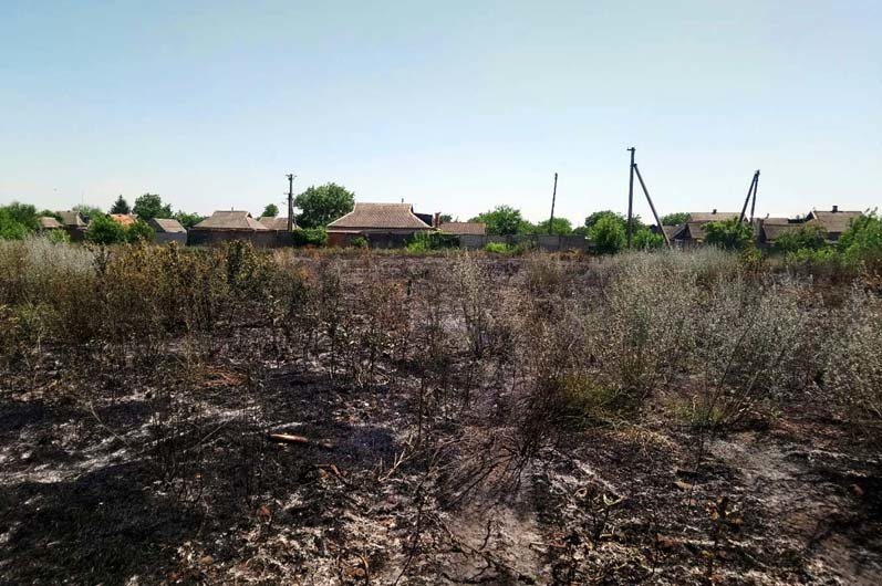 Берегите экосистему: жители Днепропетровщины продолжают палить сухую траву, фото-3