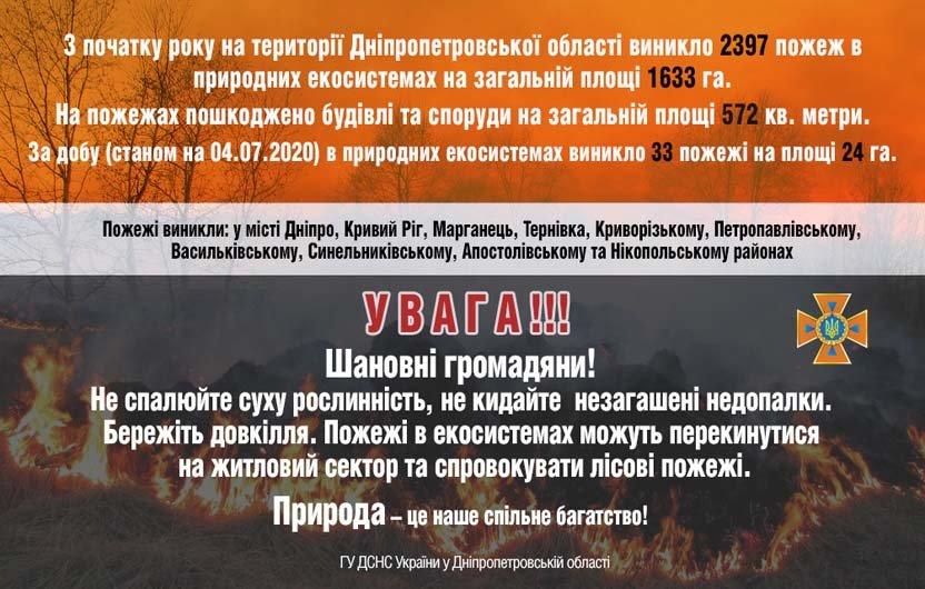 Берегите экосистему: жители Днепропетровщины продолжают палить сухую траву, фото-1
