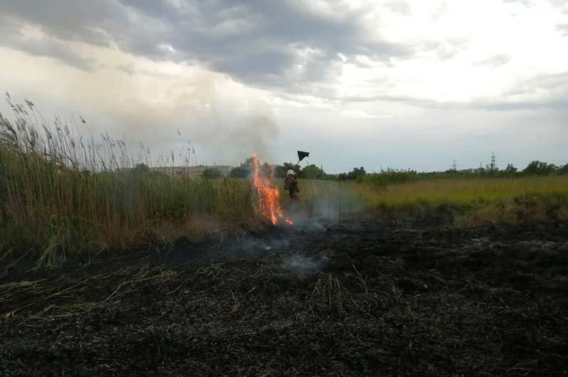 """""""Чрезвычайная опасность"""": за сутки в Днепропетровской области произошло 37 пожаров, - ФОТО, фото-5"""
