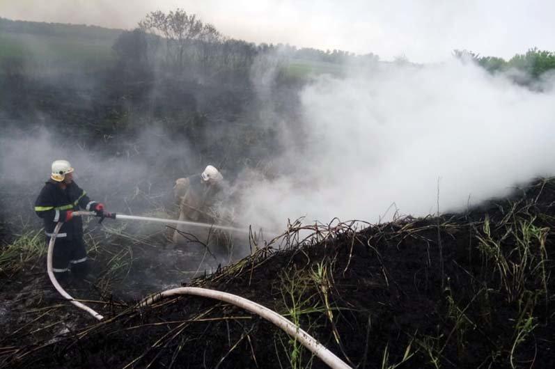 """""""Чрезвычайная опасность"""": за сутки в Днепропетровской области произошло 37 пожаров, - ФОТО, фото-2"""