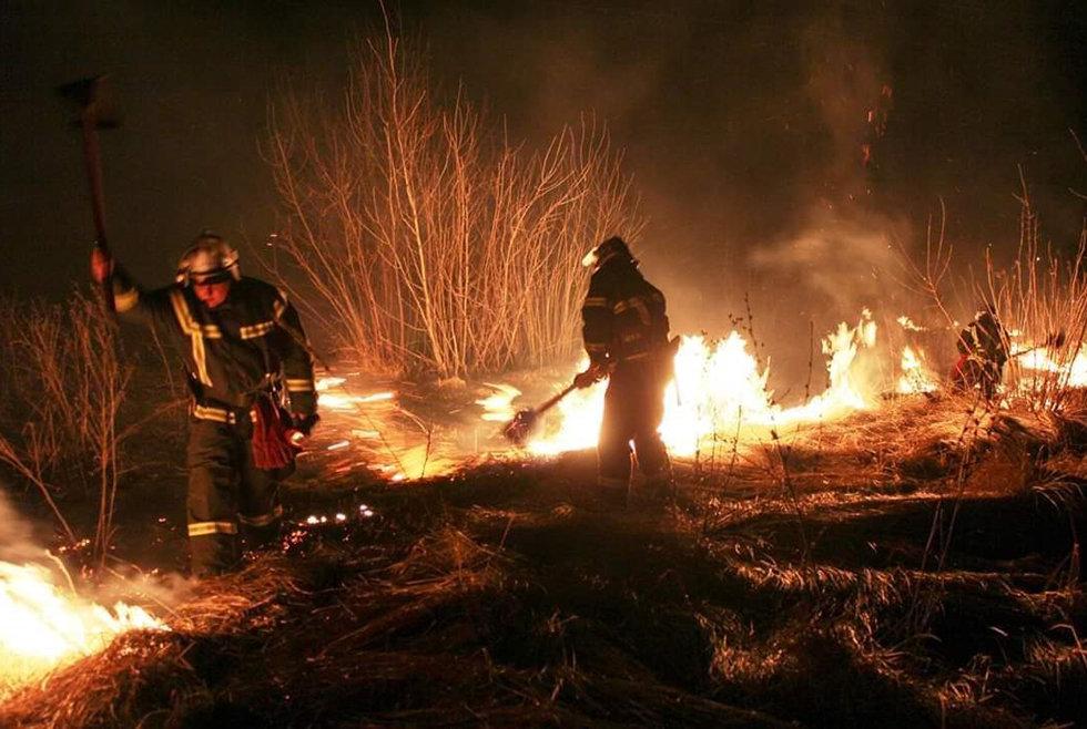 Невероятный урон экосистеме: на Днепропетровщине за сутки произошло 35 пожаров, - ФОТО, фото-2