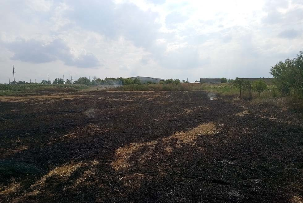 Горели 50 гектаров: жители Днепропетровщины продолжают палить траву, - ФОТО, фото-3