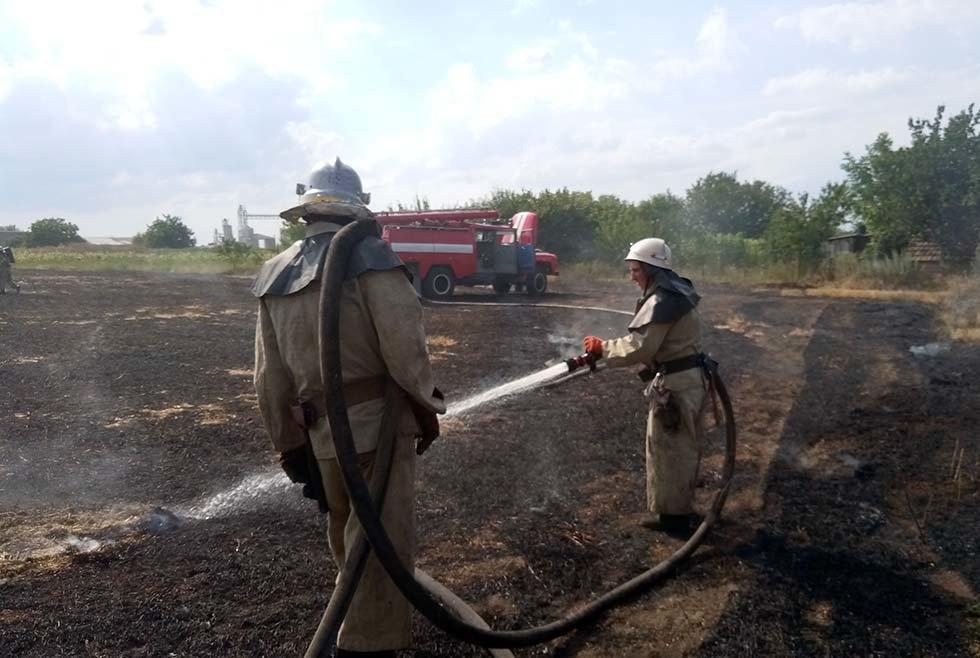Горели 50 гектаров: жители Днепропетровщины продолжают палить траву, - ФОТО, фото-2