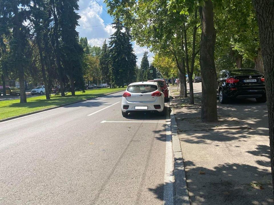 В Днепре появились новые бесплатные парковки, - АДРЕСА, ФОТО, фото-1