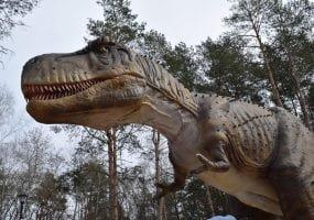 В одном из парков Днепра появится выставка с динозаврами, - ФОТО, фото-5