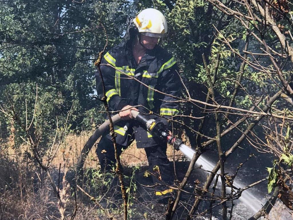 Почти 50 пожаров за сутки: спасатели просят жителей Днепропетровщины не сжигать траву, - ФОТО, фото-8