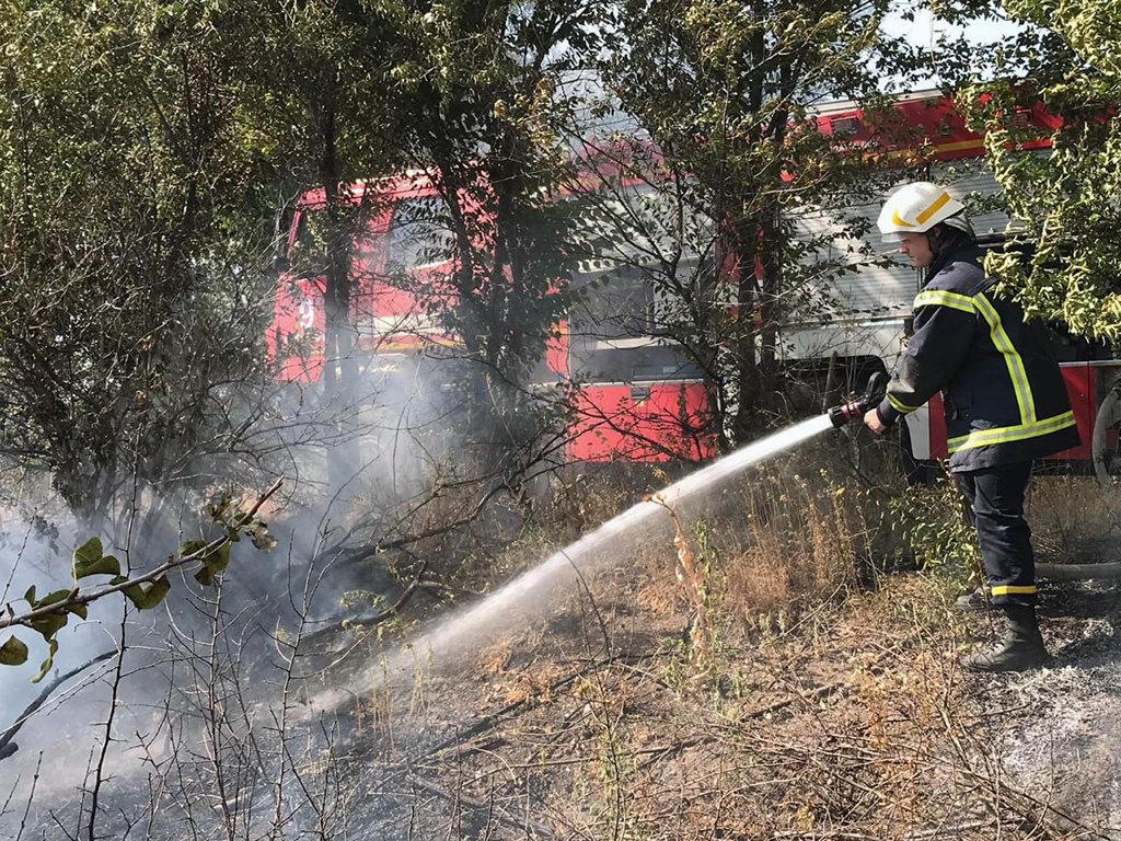 Почти 50 пожаров за сутки: спасатели просят жителей Днепропетровщины не сжигать траву, - ФОТО, фото-4