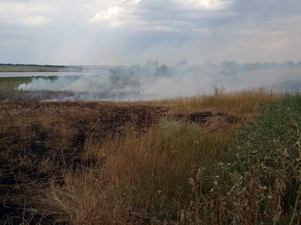 Почти 50 пожаров за сутки: спасатели просят жителей Днепропетровщины не сжигать траву, - ФОТО, фото-7