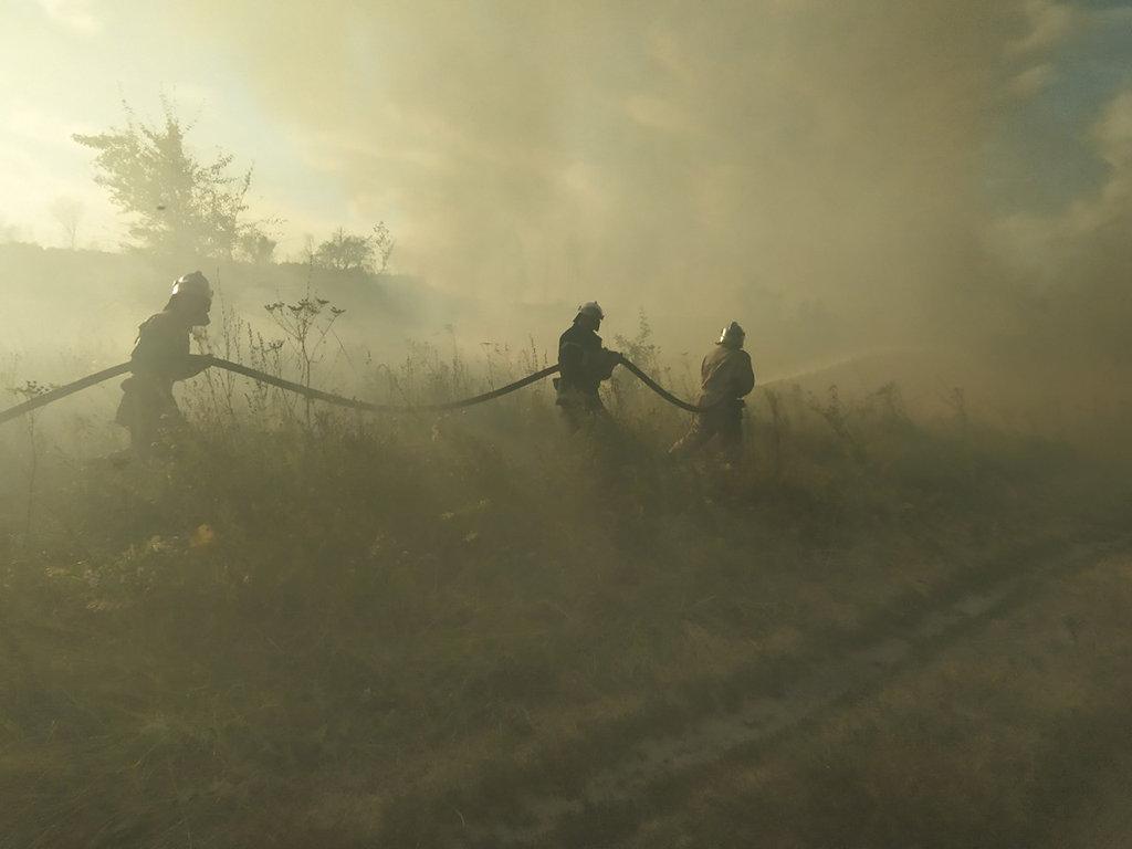Почти 50 пожаров за сутки: спасатели просят жителей Днепропетровщины не сжигать траву, - ФОТО, фото-3