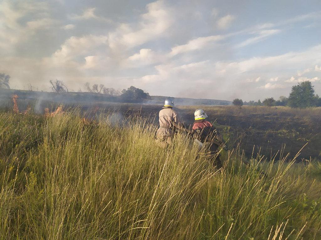 Почти 50 пожаров за сутки: спасатели просят жителей Днепропетровщины не сжигать траву, - ФОТО, фото-2