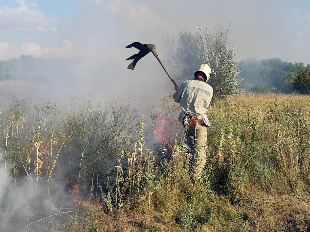 Почти 50 пожаров за сутки: спасатели просят жителей Днепропетровщины не сжигать траву, - ФОТО, фото-1