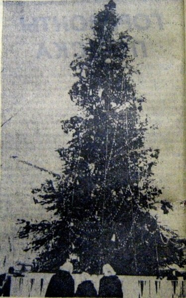 От времен СССР до сегодня: как раньше выглядела главная елка Днепра, - ФОТО, фото-12