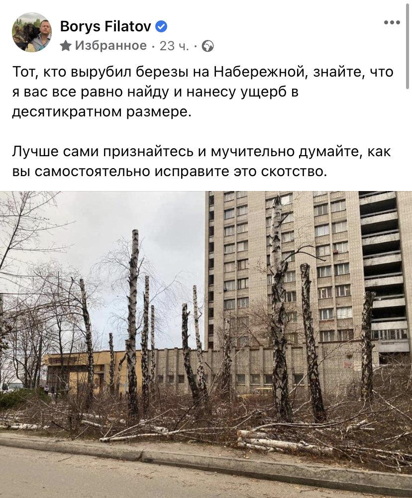 На Победе в Днепре вырубили берёзы: горсовет обратился в полицию, - ФОТО , фото-1