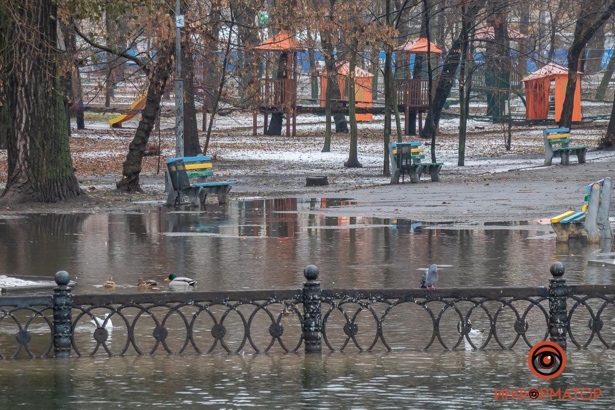 В Днепре затопило парк Глобы, фото-5