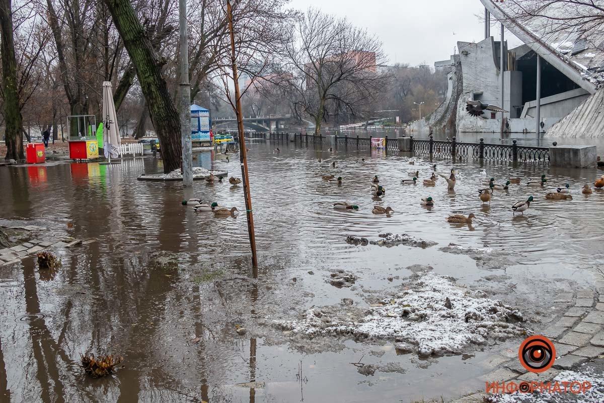 В Днепре затопило парк Глобы, фото-8