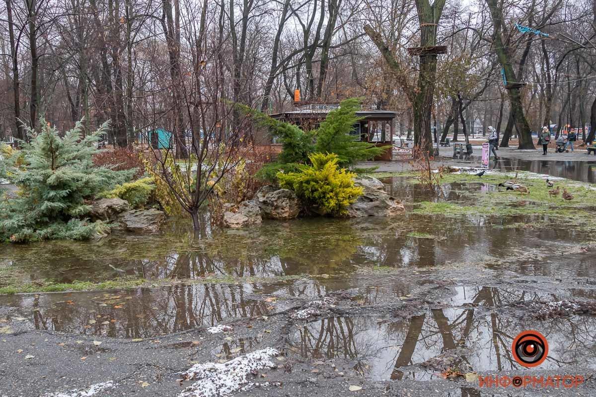 В Днепре затопило парк Глобы, фото-9