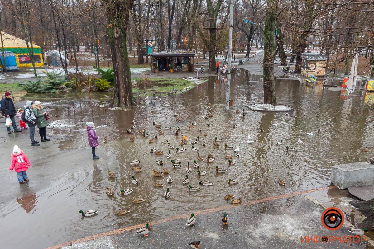 В Днепре затопило парк Глобы, фото-10