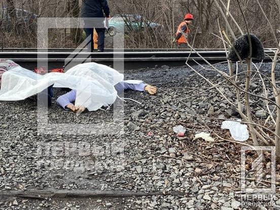Под Днепром товарный поезд переехал женщину, - ФОТО, фото-1