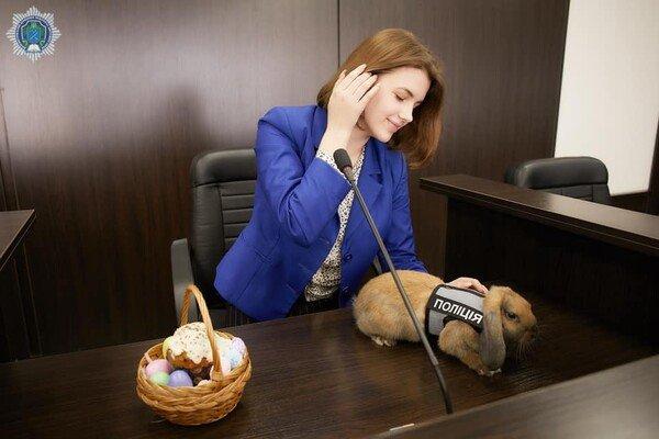 """В Днепре появился """"кролик полицейский"""", фото-4"""