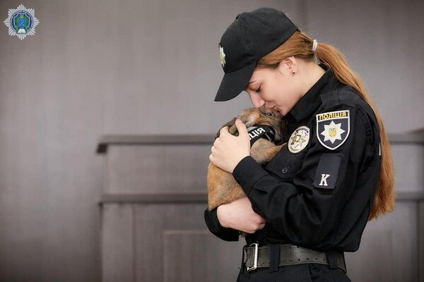 """В Днепре появился """"кролик полицейский"""", фото-2"""