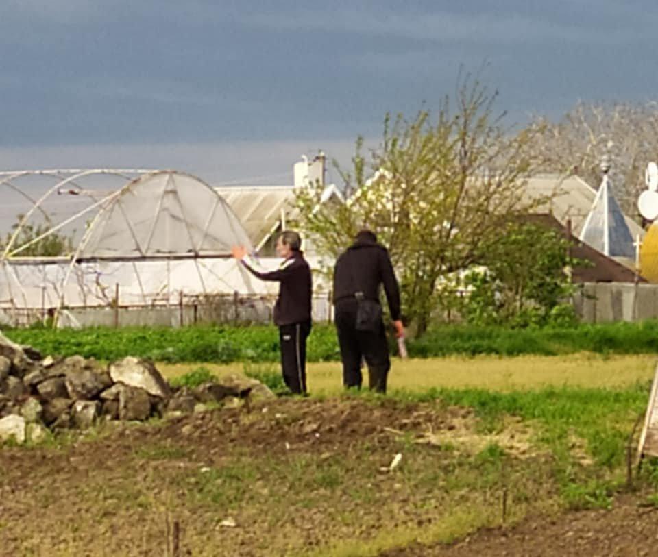 На Днепропетровщине укладчики асфальта ездят рвать на нем сорняки, фото-4