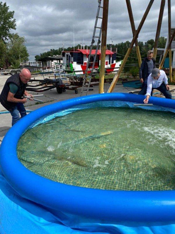 Вскоре водоемы Днепра могут очистить по инновационной немецкой системе, фото-2