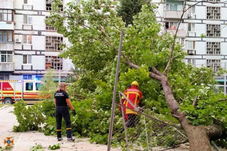 В Днепре огромное дерево упало на детскую площадку: подробности, фото-1