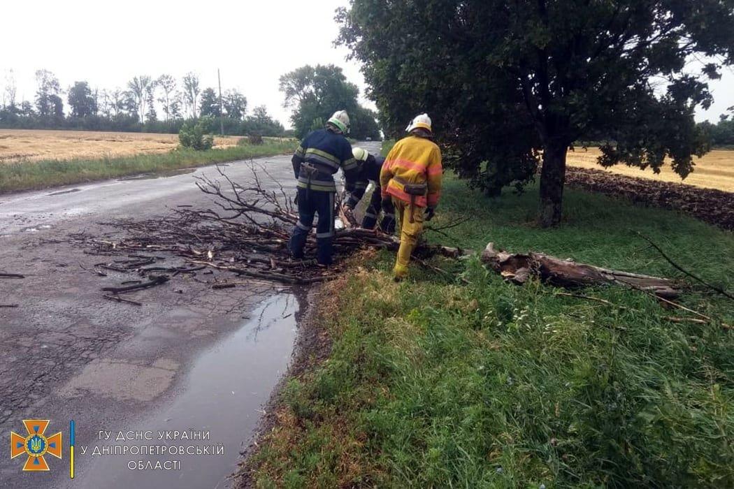 Сегодня ураган в Днепре и области разбушевался и повалил на проезжую часть деревья, - ФОТО, фото-3