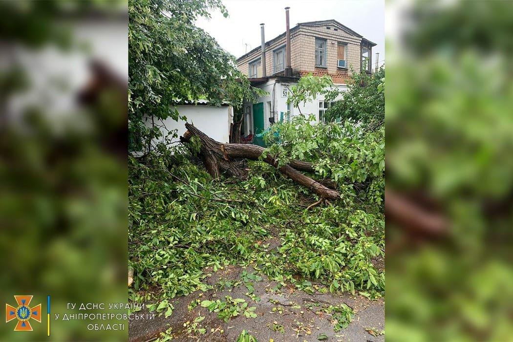 Сегодня ураган в Днепре и области разбушевался и повалил на проезжую часть деревья, - ФОТО, фото-1