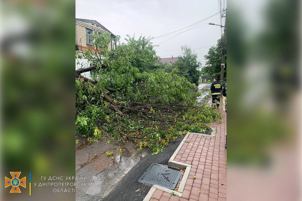 Сегодня ураган в Днепре и области разбушевался и повалил на проезжую часть деревья, - ФОТО, фото-2