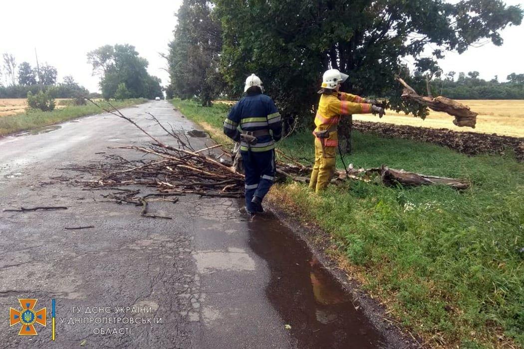 Сегодня ураган в Днепре и области разбушевался и повалил на проезжую часть деревья, - ФОТО, фото-4