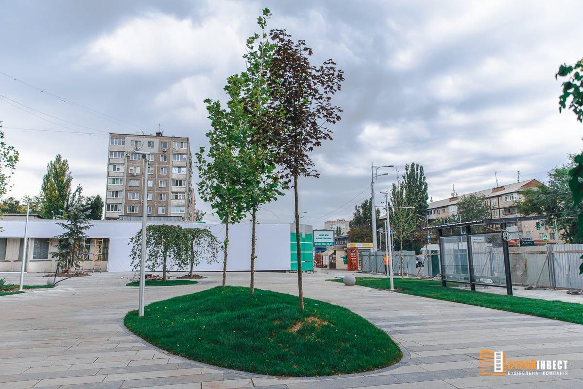 На левом берегу Днепра завершается строительство уникального сквера, - ФОТО, фото-5